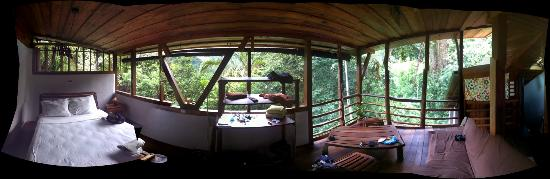 Omega Tours Eco Jungle Lodge: Beauty View Cabin (Panorama view)