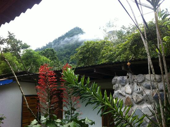 Omega Tours Eco Jungle Lodge: View from the entrance