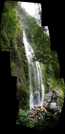 Omega Tours Eco Jungle Lodge: Bejuco waterfall - 2 hour hike away, 60 meters tall