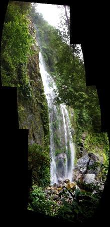 Omega Tours Eco Jungle Lodge 사진