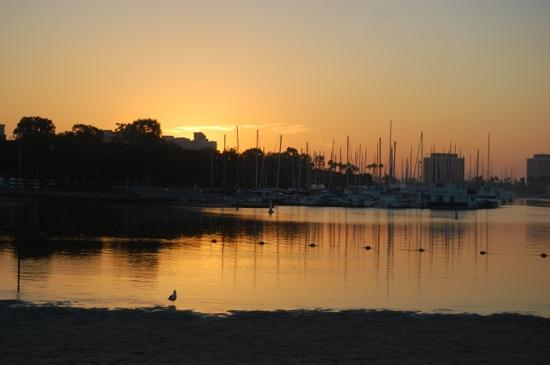 Foghorn Harbor Inn Hotel: sunrise over marina