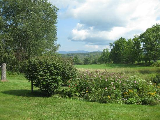 Clifford Country Bed & Breakfast : Emily's back yard and flowers