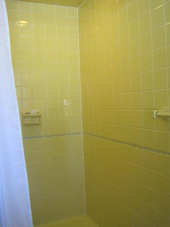 Birchwood Inn: Shower stall - clean and bright.