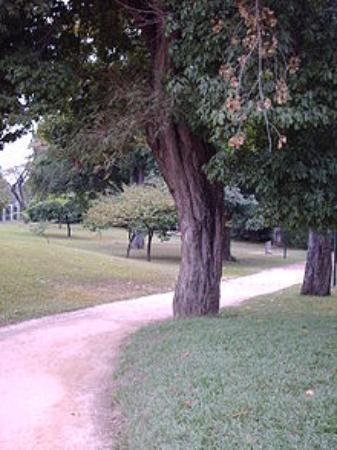 Parque Fernando Penalver