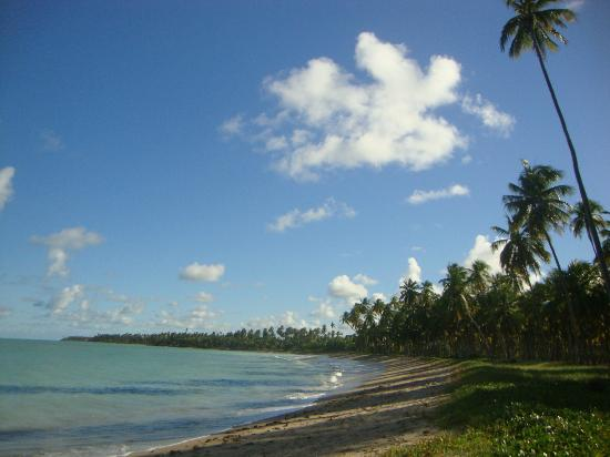 Patacho Beach
