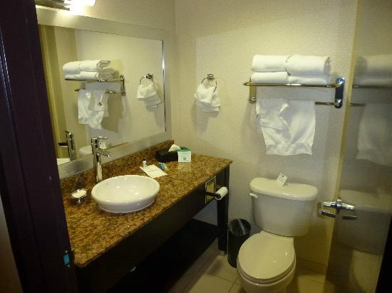 BEST WESTERN PLUS Fort Lauderdale Airport South Inn & Suites: El Baño