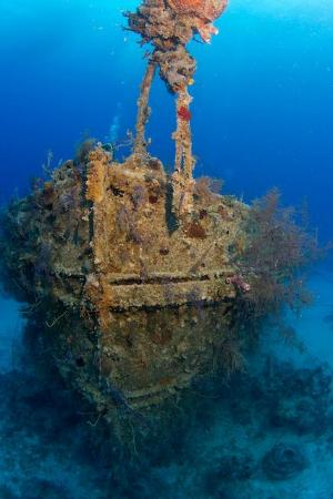 Stella Maris Resort Club: Wreck dive