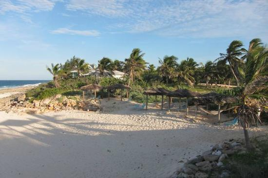 Stella Maris Resort Club: Beach
