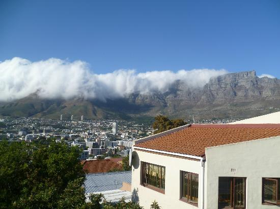 Upperbloem: Table Mountain, view from the balcony