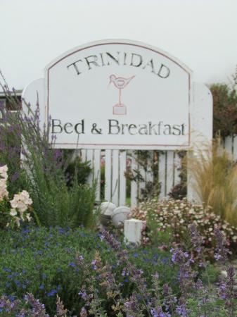 Trinidad Bay Bed & Breakfast 사진