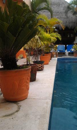 Casita de Maya: View from end of pool area
