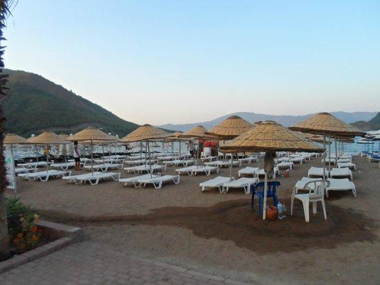 Hotel Siesta照片