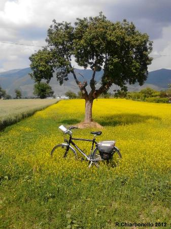 Ecologico Tours Day Tours: Pedalare nella Valle Umbra - Cycling in the Valle Umbra