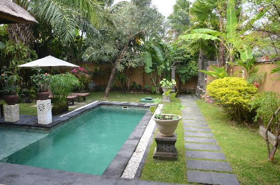เดอะบัวห์ บาหลี วิลลาส: Great pool
