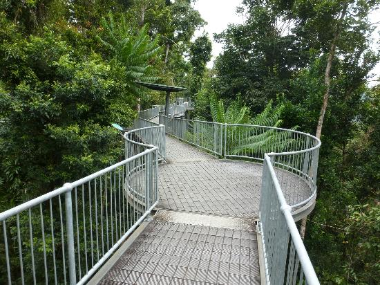 Innisfail Australia a nice safe comfy walk with a view & Innisfail Pictures - Featured Innisfail Photos - TripAdvisor