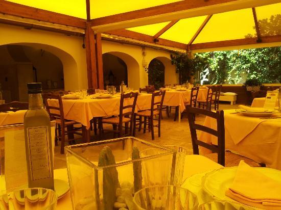 Agriturismo Lama San Giorgio: vista dal mio tavolo....