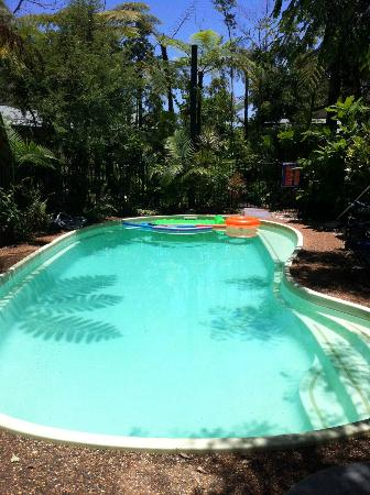 Rainforest Motel: Swimming Pool
