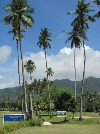 Seychelles Golf Club: Golf field