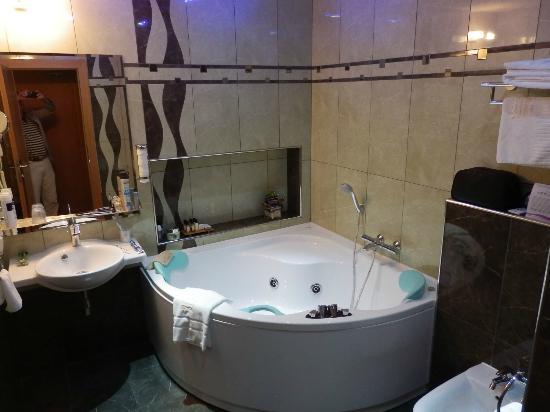 Hotel Danubia Gate Bratislava : the bathroom