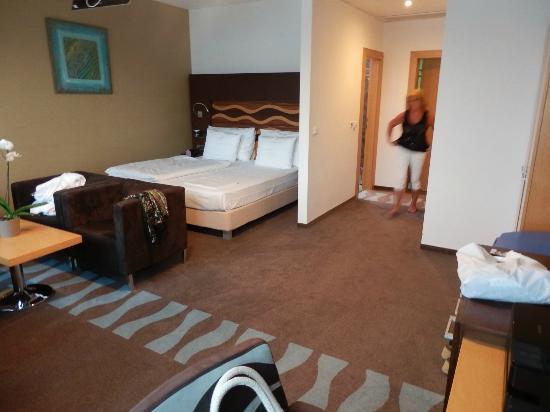 Hotel Danubia Gate Bratislava : our hotelroom