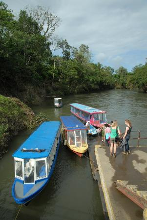 Chilamate Rainforest Eco Retreat: Boats for the river tour at Sarapiqui