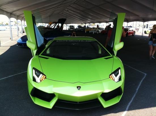 Exotics Racing: aventador