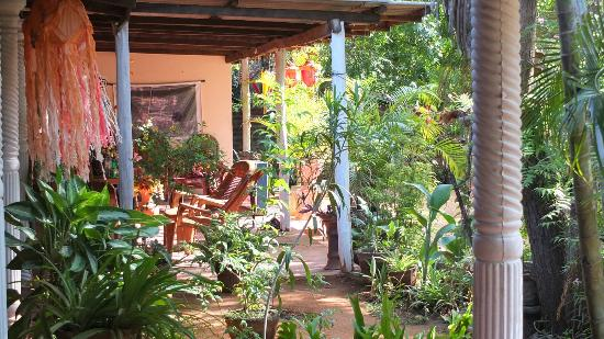 Nilmini Lodge: le patio à l'abri du soleil