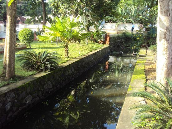 Coconut Creek Farm and Homestay: Canal passing thru Homestay