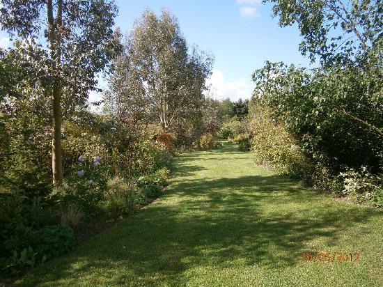 La Maison de Lavande: part of south garden