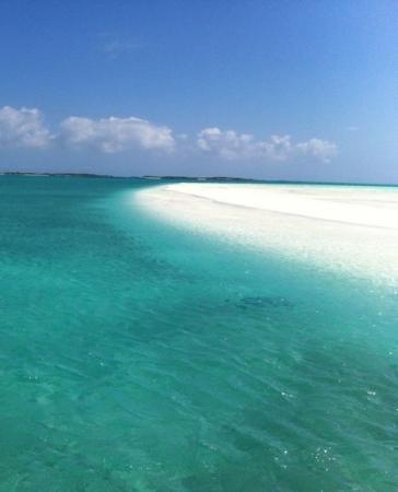 Coral Gardens: il mare di Exuma