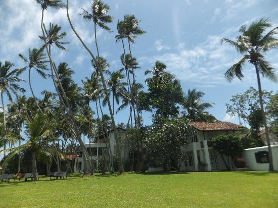 เดอะ วิลลา เบนโตตา ถนนพาราไดซ์: The Villa Bentota