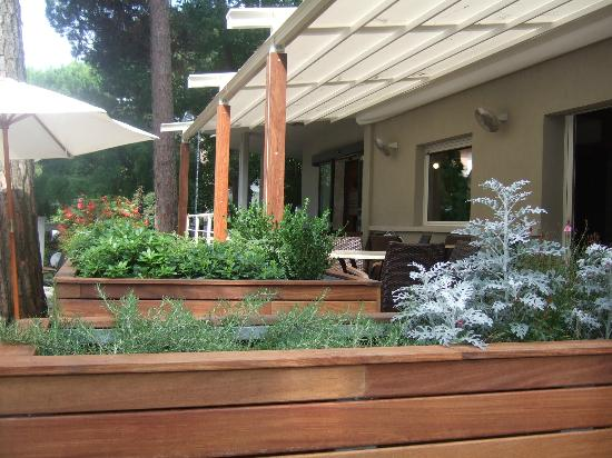 Hotel Villa Ombrosa : Giardino