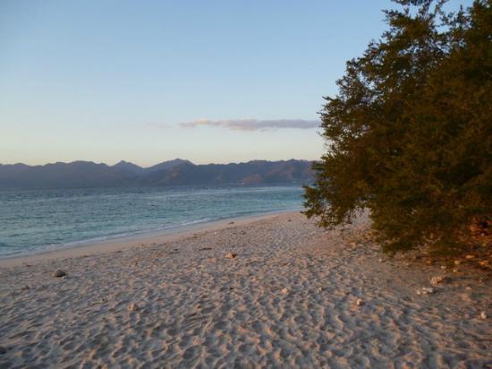 Kontiki Cottage: strand