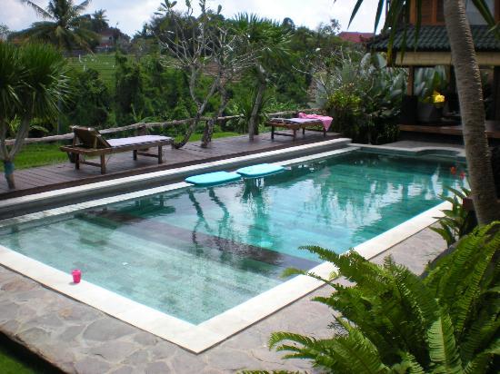 Villa Surya Abadi : piscine