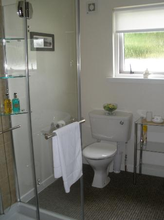 Avalon Guest House: so clean, so spacious, lovely shower!