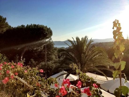 Hotel Villa Wanda: Veduta dalla mia stanza: il mare
