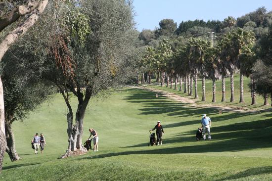 La Reserva Rotana: Golfplatz Rotana immer wieder anders