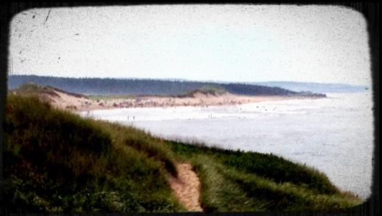 ‪‪Abby Lane Summer Homes‬: cavendish beach at a distance‬