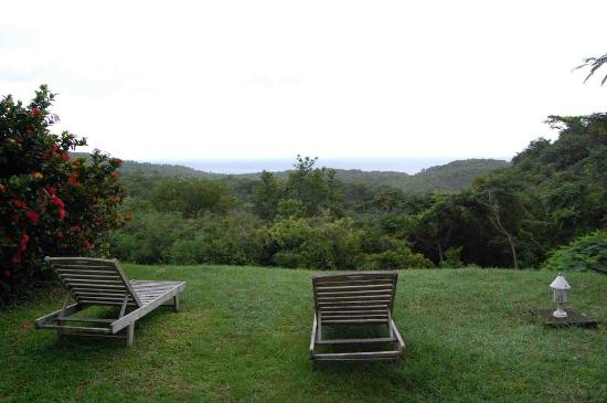 Domaine de l'Anse Ramier : The view