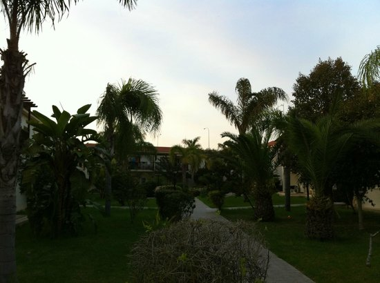 Tsokkos Paradise Village: Trädgården