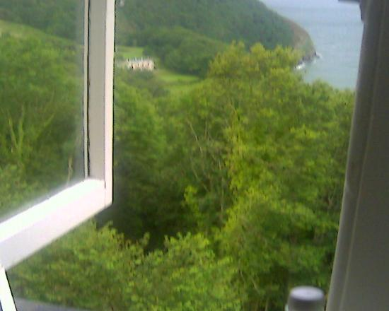 Woody Bay Hotel: View from the bedroom