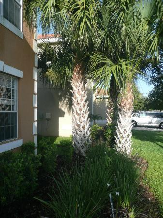 Aviana Resort Orlando: front of the villa