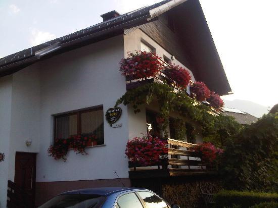 Apartments Tavcar: The house