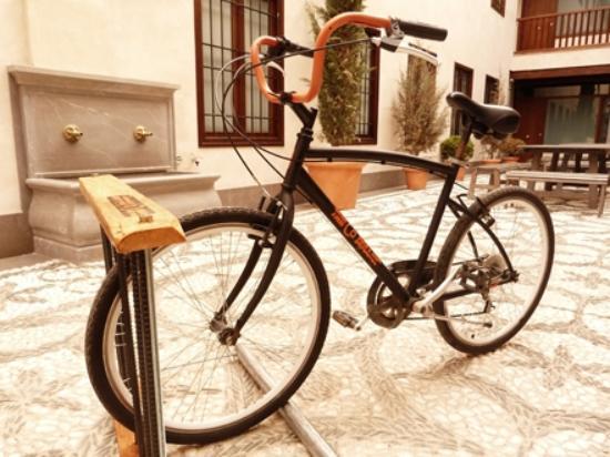 The Codinamic, Bike tours
