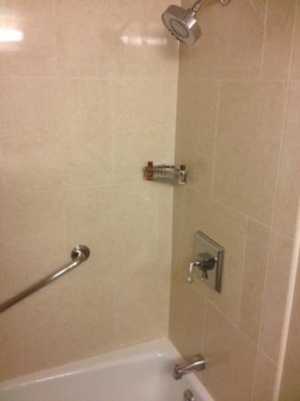 Sheraton Parsippany Hotel: shower
