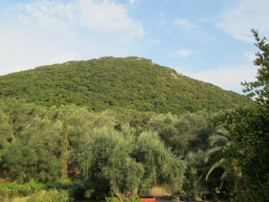 Paleokastritsa Beach: view from Afroditi Appartments