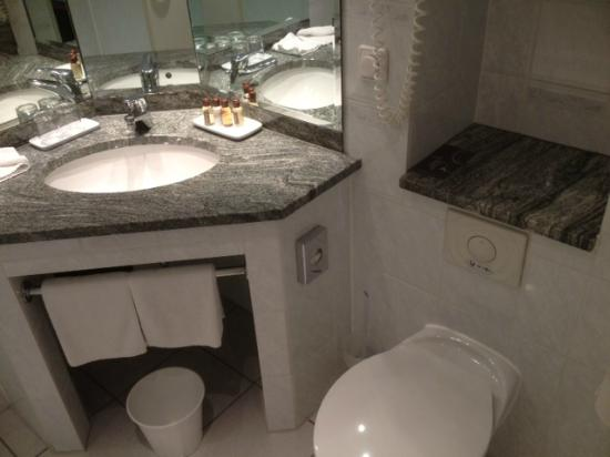 Sheraton Offenbach Hotel: sink/toilet