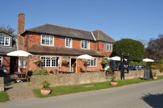 White Dog Inn Ewhurst Green Reviews