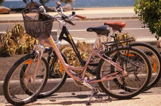 Revolution Bikes : Bicicletas de alquiler