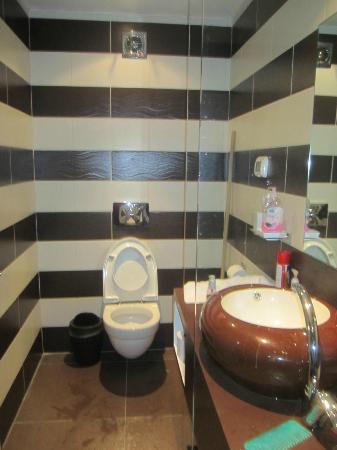 Rich Luxury Suites : WC & Basin Area
